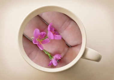 fotojet-collageflower